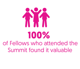 100 percent of fellows who attended summit found it valuable